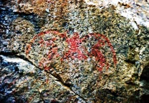 Stein Valley owl rock painting